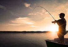 Рыбалка в Домодедово