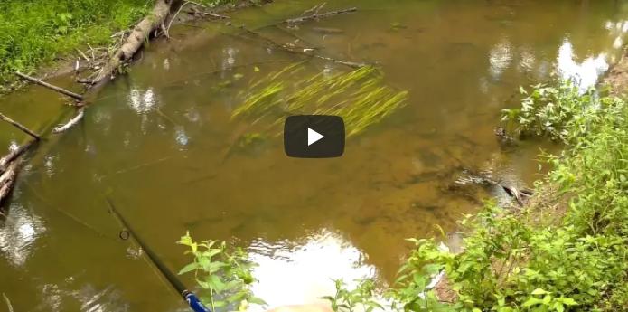Ловля щуки на малых реках на вертушки и силикон