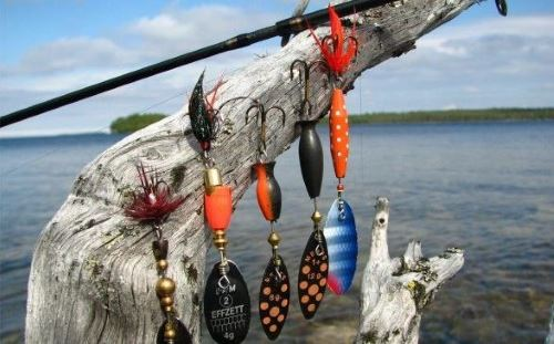 Советы рыболовов