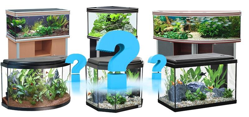 Как правильно выбирать аквариум