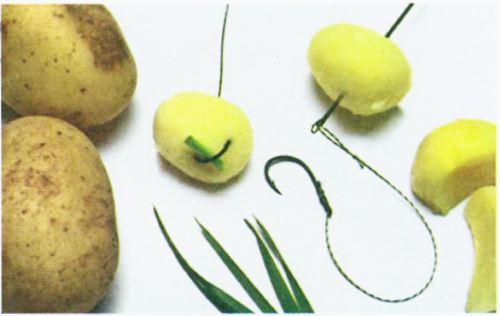Приготовление картошки на карпа