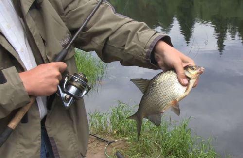 Рыбалка на леща в апреле