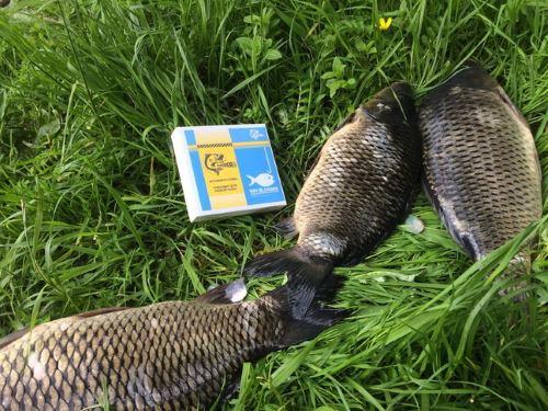 Отзывы рыбаков и авторитетных изданий