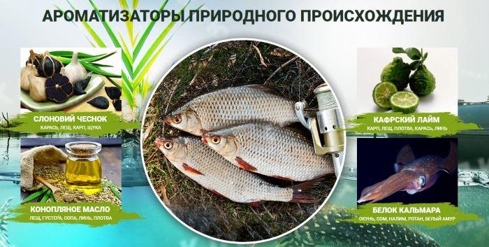 Состав активатора клева Fish XXL