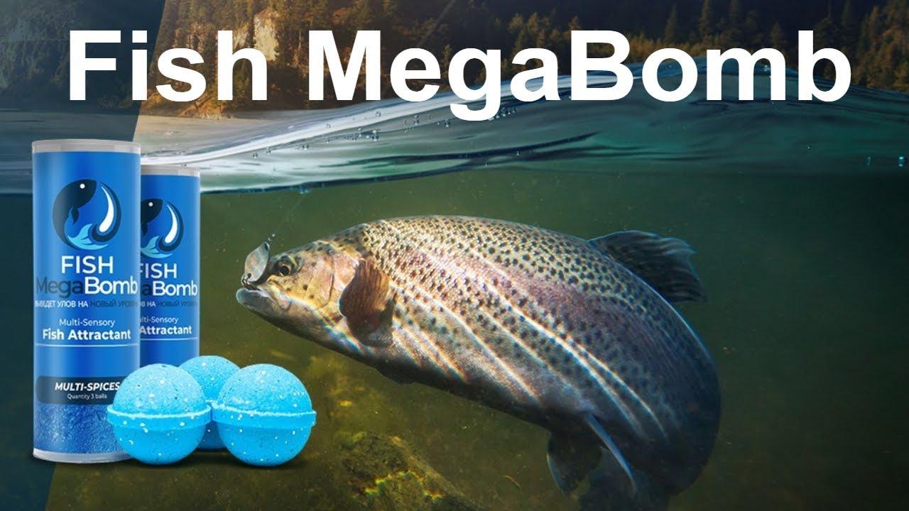 Приманка для рыбы в действии